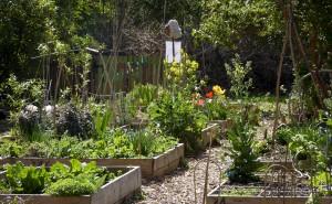 jardin partage